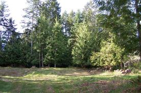 Gabriola, B.C.  Lot 49 Bertha Avenue V0R 1X3